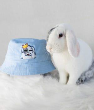 kaytrayne-hat-blue-2