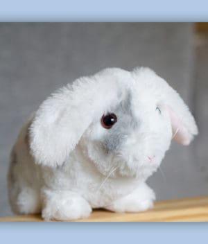 kaytraine-plushy-bunny-4-1