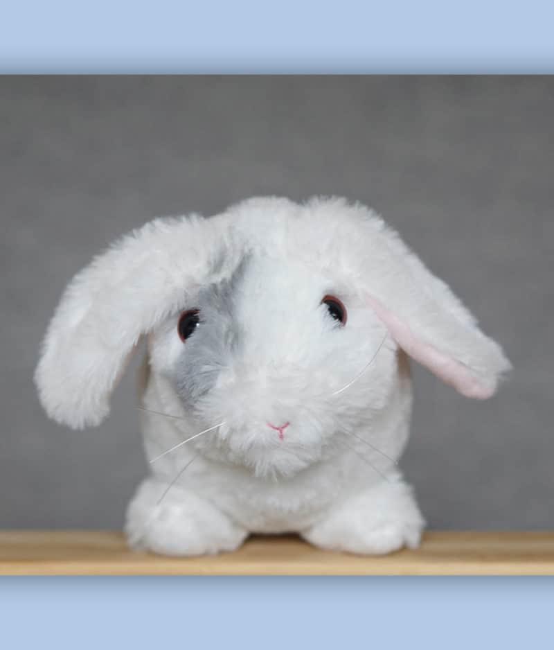 kaytraine-plushy-bunny-3-1