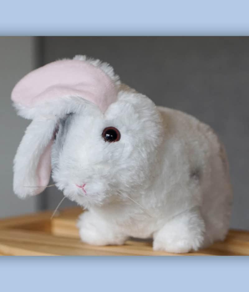 kaytraine-plushy-bunny-2-1