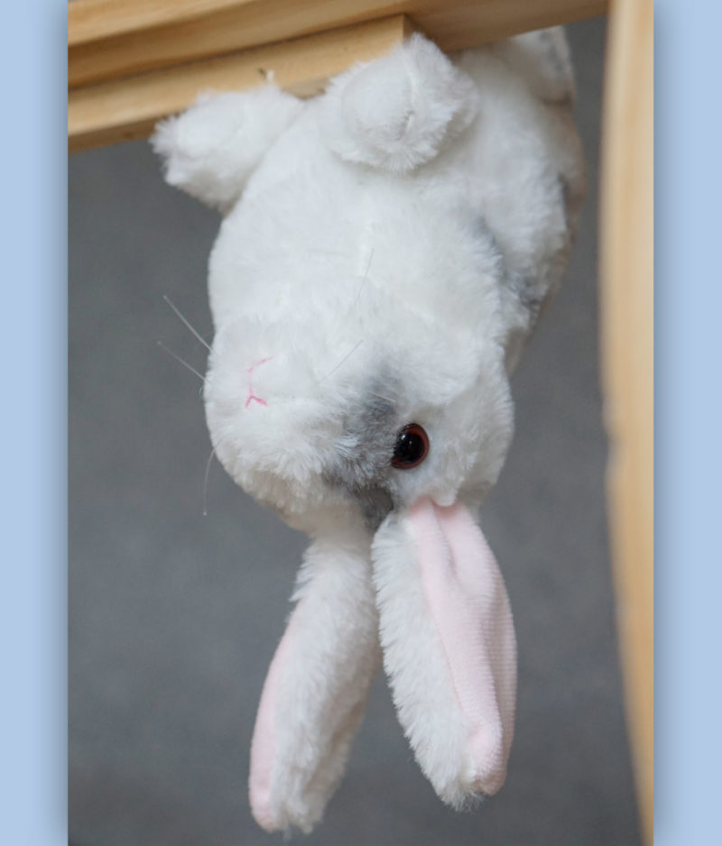 kaytraine-plushy-bunny-1-1